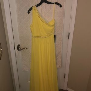 Bcbg floor length gown